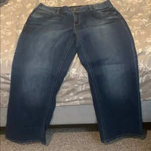 Lane Bryant Bootcut Denim